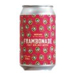 Synergy-e-Narcose-Frambonade